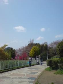 西郷山公園です